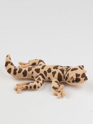 Jašterica – gekon