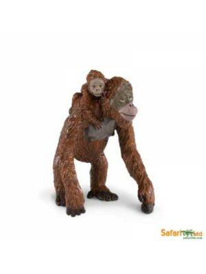 Orangutan s mláďaťom na chrbte