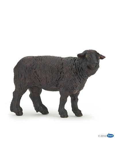 Čierna ovca