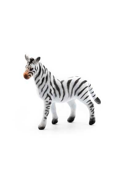 Zebra – semiš
