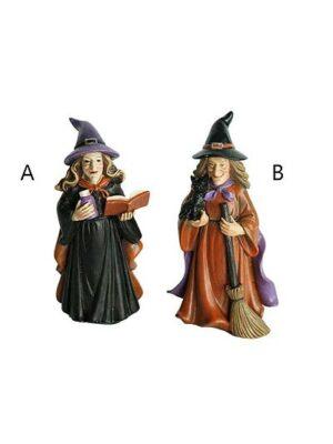 Čarodejnica lektvar/kniha a mačka/metla